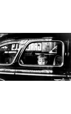 Elliott Erwitt, Boy in Car Window
