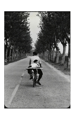 Elliott Erwitt, Provence, Boy with Baguette