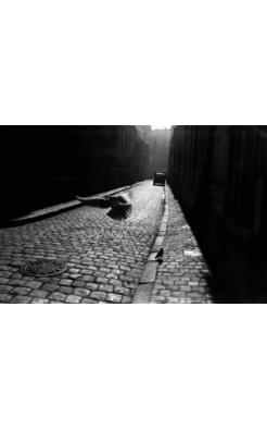 Elliott Erwitt, Pigeon in Cobbled Street, Orleans, France