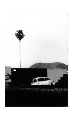 Elliott Erwitt, Los Angeles, Single Plam