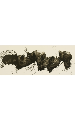James Nares, West on Sunrise Black, 2010