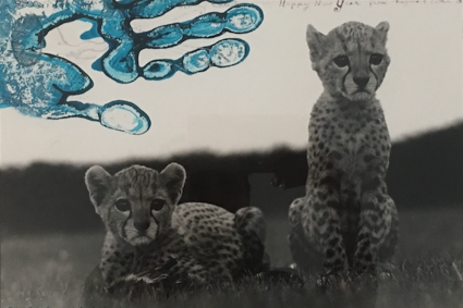 Orphaned Cheetah Cubs, Mweiga National Park, Kenya, for The End of the Game