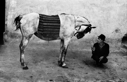 Joseph Beuys, Romania