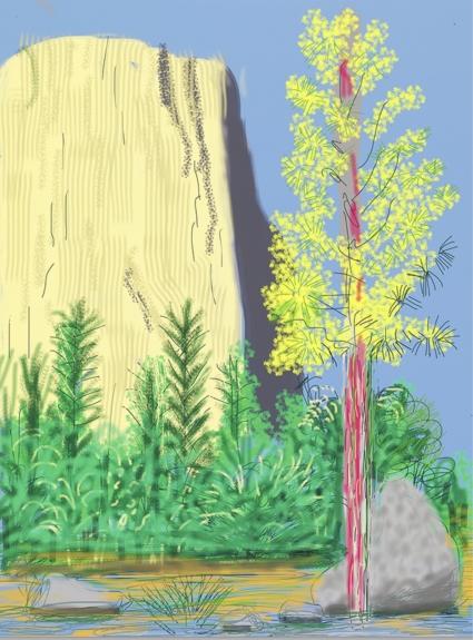 David Hockney, Yosemite, No. 22