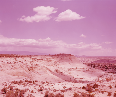David Benjamin Sherry, Pink Desert