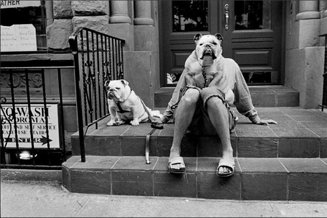 Elliott Erwitt, New York City
