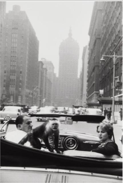 Garry Winogrand, Park Avenue, 1959