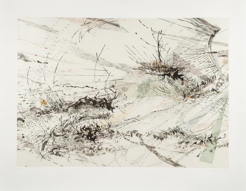 Julie Mehretu, Diffraction, 2005