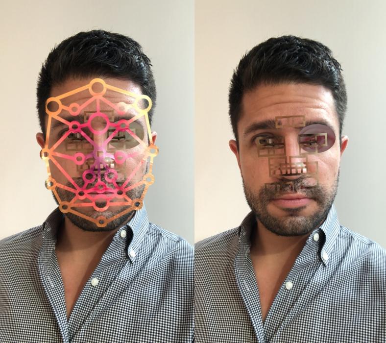 Tony Oursler, Facewreck