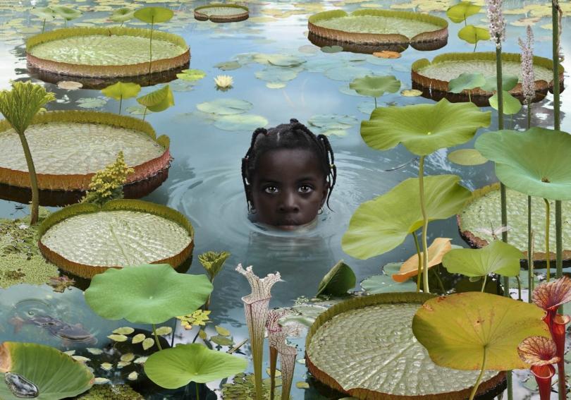 Ruud van Empel, Girl with Lillipads