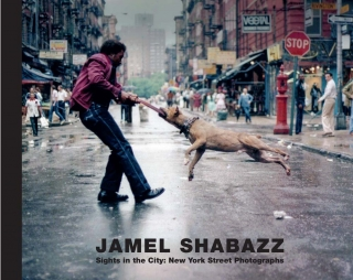 Jamel Shabazz, Sights in the City:  New York Street Photographs
